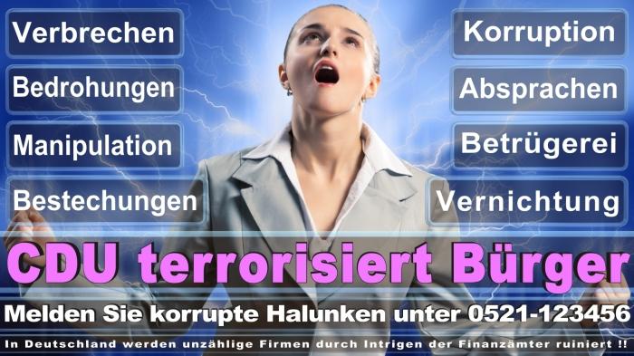 Bundestagswahl 2017 CDU SPD, AfD NPD Piratenpartei Umfragen Prognosen Termin Datum Stimmzettel Ergebnis Gewinner Verlierer Angela Merkel Frauke Petry